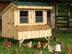Chicken Coop is designed to fit well in your backyard and look good at the same time, plus it features a durable metal roof.