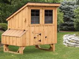 Chicken Coop with shed style roof, features windows and nesting boxes with small run door.