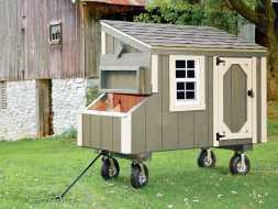 This chicken coop features painted vertical siding, with white trim and a sheds style roof, plus it has wheels making it very easy to move around.