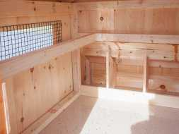 Chicken Coops interior can be tailored to your wants, this one features unfinished pine board and nesting rails with wire mesh over windows for ventilation.